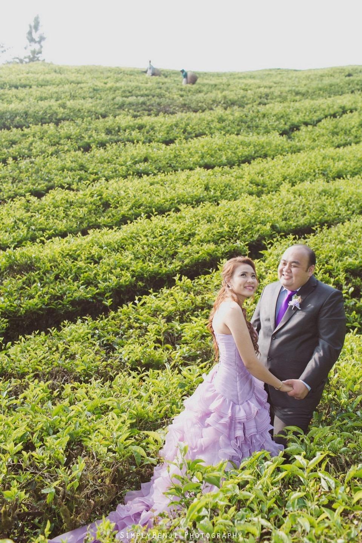 Pre-Wedding Freelance Destination Boh Tea Farm Copthorne Hotel Cameron Highlands _KL Photographer_005